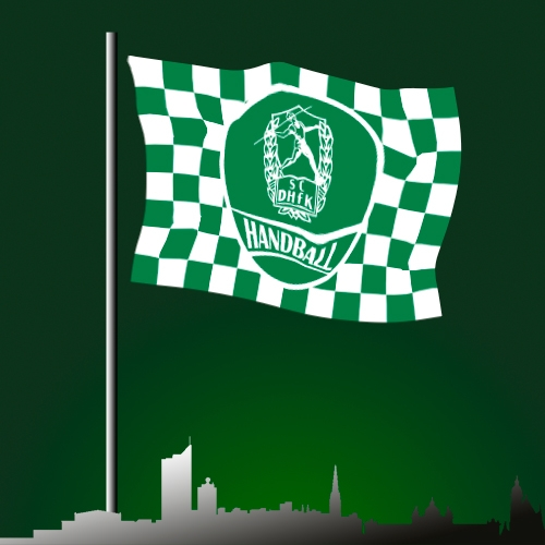 Hissflagge mit Logo 150x100cm